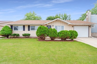 Streamwood Single Family Home For Sale: 505 East Schaumburg Road