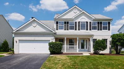 Bolingbrook Single Family Home For Sale: 1449 Schoenherr Avenue