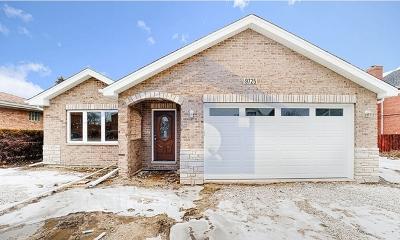 Oak Lawn Single Family Home For Sale: 9725 Meade Avenue