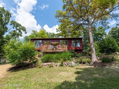 Lake In The Hills Single Family Home For Sale: 543 Blackhawk Drive