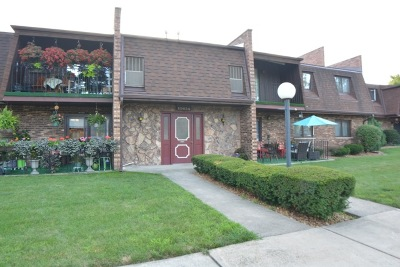 Palos Hills Condo/Townhouse For Sale: 10634 South Brooklodge Lane #2D2