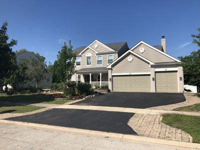 Plainfield Single Family Home For Sale: 22700 Bass Lake Road