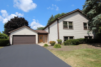 Lake Zurich Single Family Home For Sale: 675 Red Bridge Road