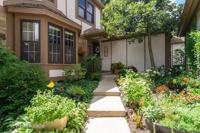 Wheaton Condo/Townhouse For Sale: 1130 Oakview Drive
