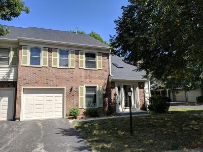 Schaumburg Condo/Townhouse For Sale: 131 Bright Ridge Drive