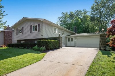 Lisle Single Family Home For Sale: 5906 Dover Drive