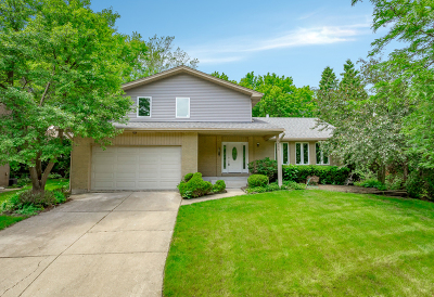 Lisle Single Family Home For Sale: 4436 Brittany Drive