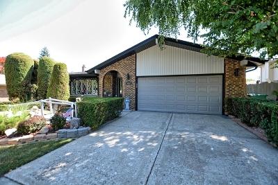 Homer Glen Single Family Home For Sale: 14453 South Mallard Lane