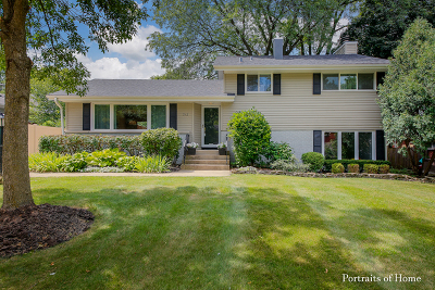 Wheaton Single Family Home For Sale: 312 South Erie Street