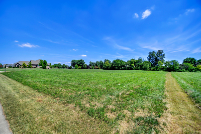 Mokena Residential Lots & Land For Sale: 18501 South Marilynn Court