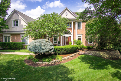 Orland Park Single Family Home For Sale: 14901 Crystal Springs Court