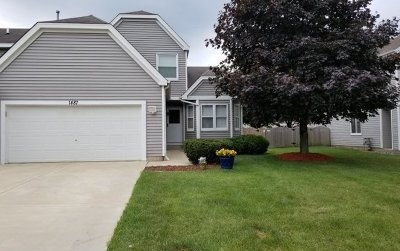 South Elgin Single Family Home For Sale: 1487 Exeter Lane