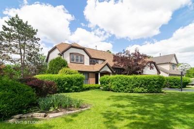 Buffalo Grove Single Family Home For Sale: 785 Vernon Court South
