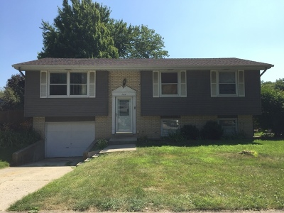 New Lenox Single Family Home For Sale: 2014 Jackson Branch Drive