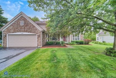 Lake Zurich Single Family Home For Sale: 1239 William Drive