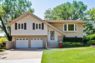 Schaumburg Single Family Home For Sale: 1409 Concord Lane
