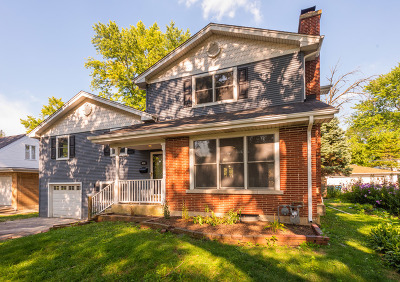 Hinsdale Single Family Home For Sale: 613 Phillippa Street