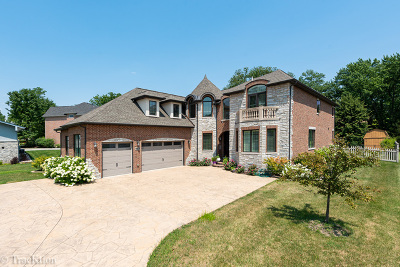 Downers Grove Single Family Home For Sale: 1736 Brian Grant Court