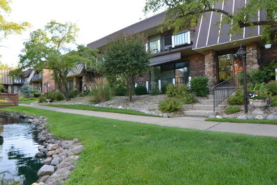 Palos Hills Condo/Townhouse For Sale: 11120 Spathis Drive #1F