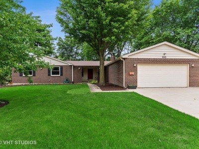 Du Page County Single Family Home For Sale: 995 Prairie Avenue