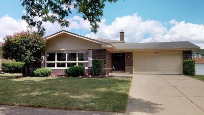 Schaumburg Single Family Home For Sale: 708 Groen Lane