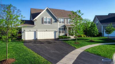 Lake Villa Single Family Home For Sale: 697 Violet Court