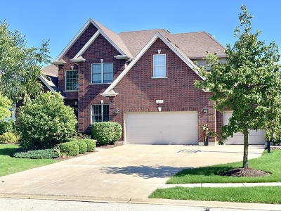 Bolingbrook Single Family Home For Sale: 1208 Bush Boulevard