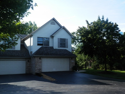 Orland Park Condo/Townhouse For Sale: 8737 Golden Rose Drive