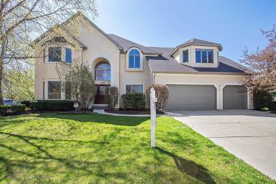Naperville Single Family Home For Sale: 1628 Robert Lane