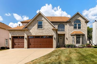 Bolingbrook Single Family Home For Sale: 668 Tall Grass Drive