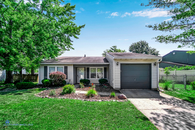 Frankfort Single Family Home For Sale: 20529 South Driftwood Drive