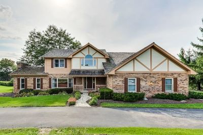 Libertyville Single Family Home For Sale: 1520 Daybreak Drive