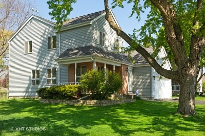 Lake Zurich Single Family Home For Sale: 589 Cortland Drive