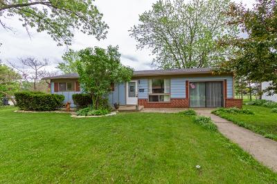 Streamwood Single Family Home For Sale: 315 Walnut Drive