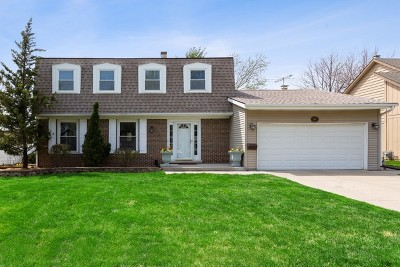 Wheaton Single Family Home For Sale: 1644 South Lorraine Road