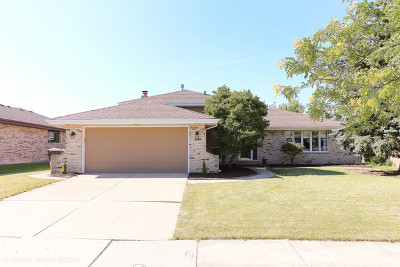 Tinley Park Single Family Home For Sale: 8313 162nd Place
