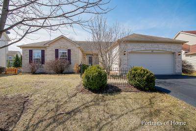 Oswego Single Family Home For Sale: 811 Columbus Drive