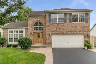 Minooka Single Family Home For Sale: 506 Edgewood Drive