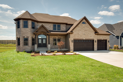 Ashwood Park Single Family Home For Sale: 4224 Chinaberry Lane