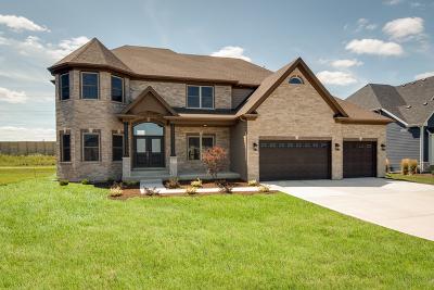 Naperville IL Single Family Home For Sale: $744,900