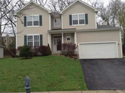 Carpentersville Rental New: 487 Oakhurst Lane