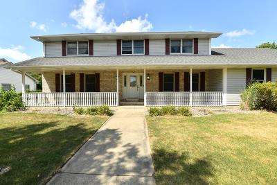 Bourbonnais Single Family Home For Sale: 700 Revere Street