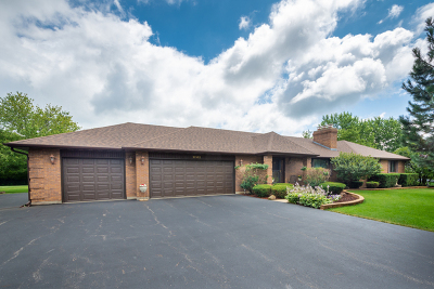 Spring Grove Single Family Home For Sale: 11102 Michigan Drive
