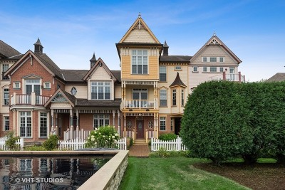 Naperville Condo/Townhouse For Sale: 4147 Royal Mews Circle #204
