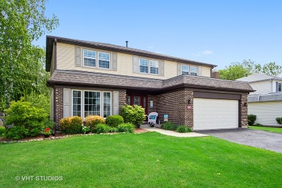 Lake Zurich Single Family Home For Sale: 570 Cortland Drive