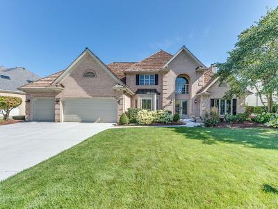 Naperville Single Family Home For Sale: 3443 White Eagle Drive