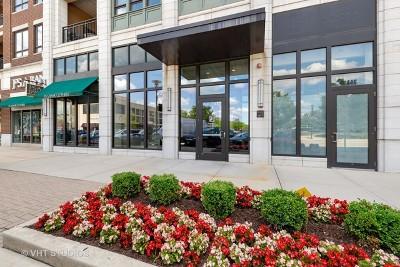 Burr Ridge Condo/Townhouse For Sale: 450 Village Center Drive #313