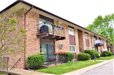 Glen Ellyn Condo/Townhouse For Sale: 505 Kenilworth Avenue #4
