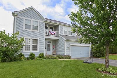 Johnsburg Single Family Home For Sale: 4114 Ella Lane