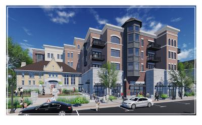 Naperville IL Condo/Townhouse For Sale: $1,400,000